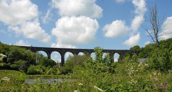 Reversing the rail tide: New rails on old tracks