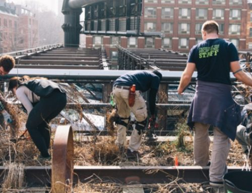 Composting the High Line