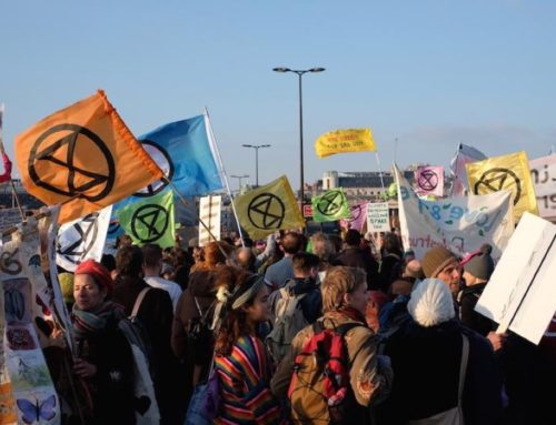 Extinction Rebellion: building a mass movement